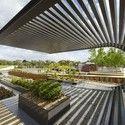 O Jardim Australiano / Taylor Cullity Lethlean + Paul Thompson © John Gollings