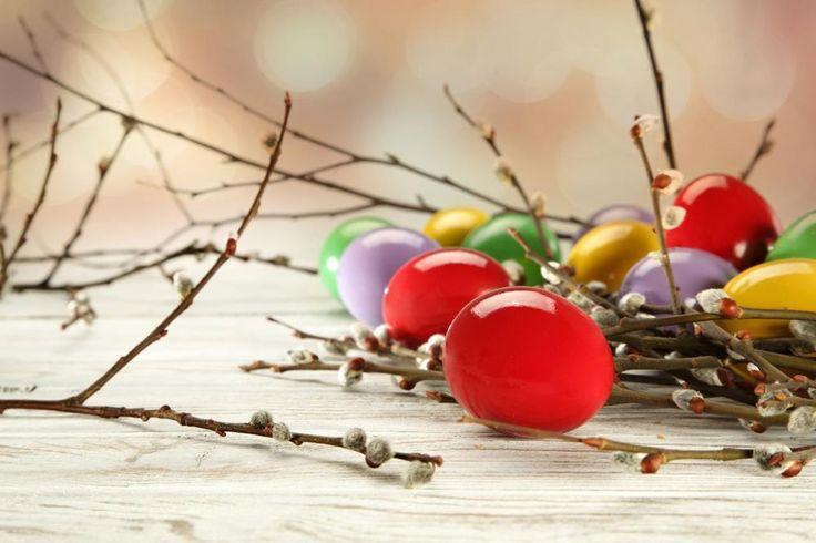 600cm300cm easter photography backdrops Egg branch bud fantasia infantil Easter Sunday ZJ