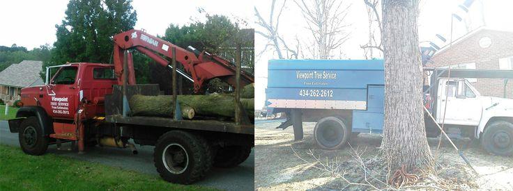 Tree Service | Tree Removal | Stump Removal | Lynchburg