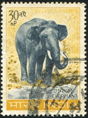 1000 Images About Postage Stamp On Pinterest Posts