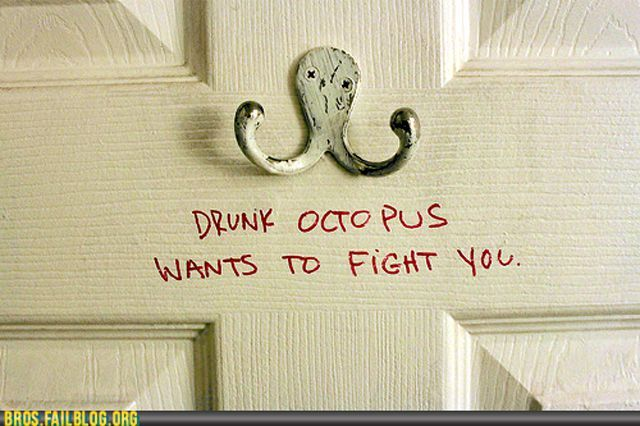 They are everywhere: Funny Stuff, Humor, Funnies, Things, Smile, Octopuses, Drunkoctopus