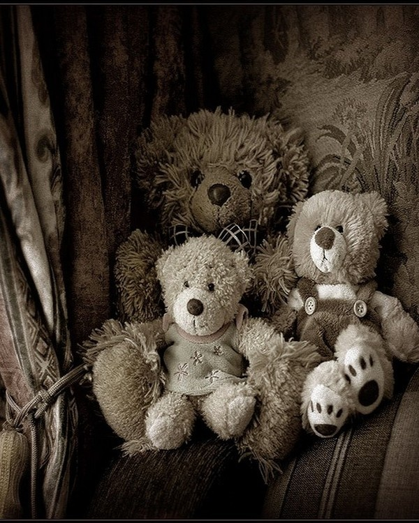.,,,,   bear family  ,....