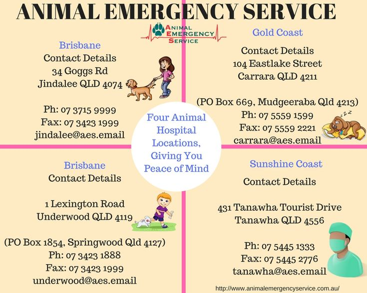 The Animal Emergency Service is not a large corporate, but a family group who grew rapidly because of dedication to the pets who need our help and support from their owners. As we grew, other like-minded vets joined the practice and enhanced our ability to help our patients.