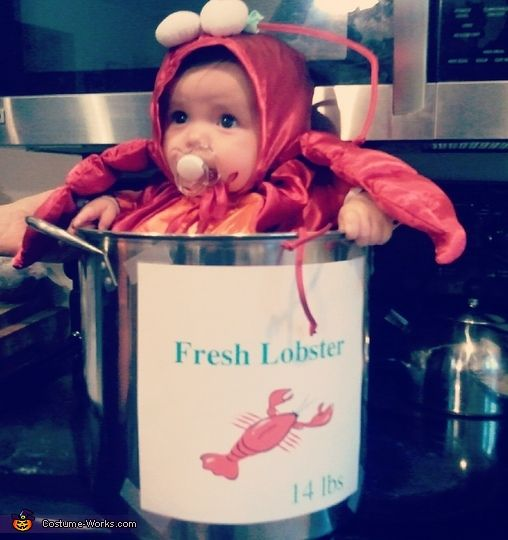 Sweet Little Lobster - 2012 Halloween Costume Contest
