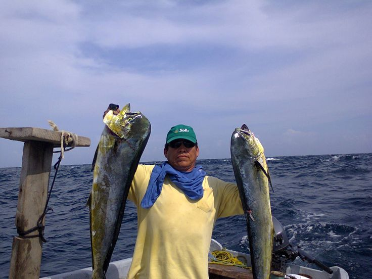 Want a real fishing adventure? Try our SportsFishing!
