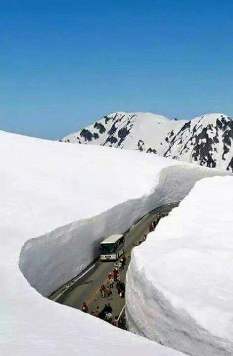 *INDIA ~ MANALI: a hill station nestled in the mountains of the Indian state of Himachal Pradesh near the northern end of the Kullu Valley, at an altitude of 2,050 m (6,726 ft) in the Beas River Valley. It is located in the Kullu district, about 270 km (168 mi) north of the state capital, Shimla.