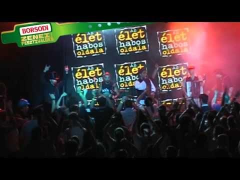 ▶ Case study: Borsodi Music Festivals, Integrated campaign 2010 - YouTube