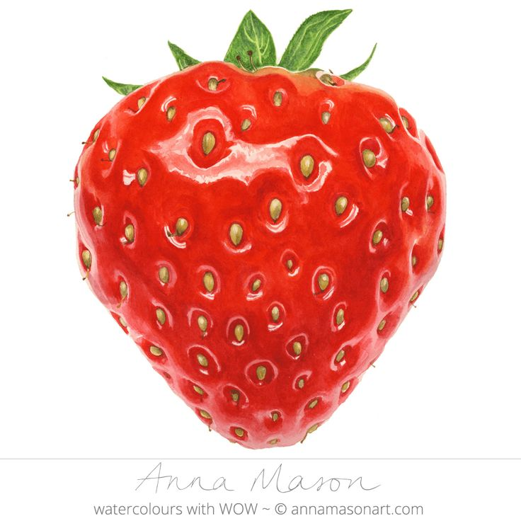 "Strawberry © 2008 ~ annamasonart.com ~ 23 x 23 cm (9"" x 9"")"