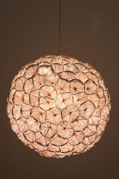 rhododendron chandelier