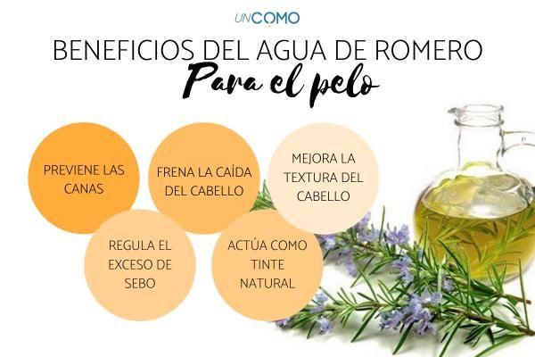 Agua De Romero Para El Cabello Beneficios Y Cómo Usarla Agua De Romero Remedios Para La Caída Del Cabello Gengibre Para El Cabello