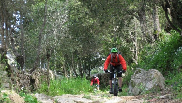 Pula capitale del Ciclismo per il Bike Festival
