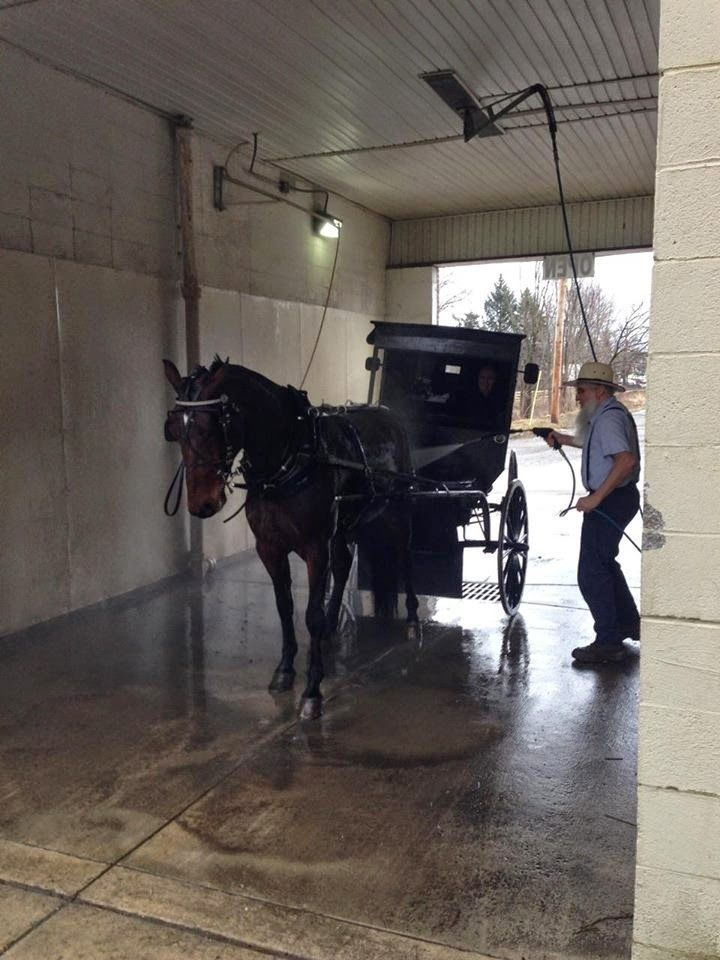 simple pleasures amish car wash a simpler life pinterest car wash and simple pleasures. Black Bedroom Furniture Sets. Home Design Ideas
