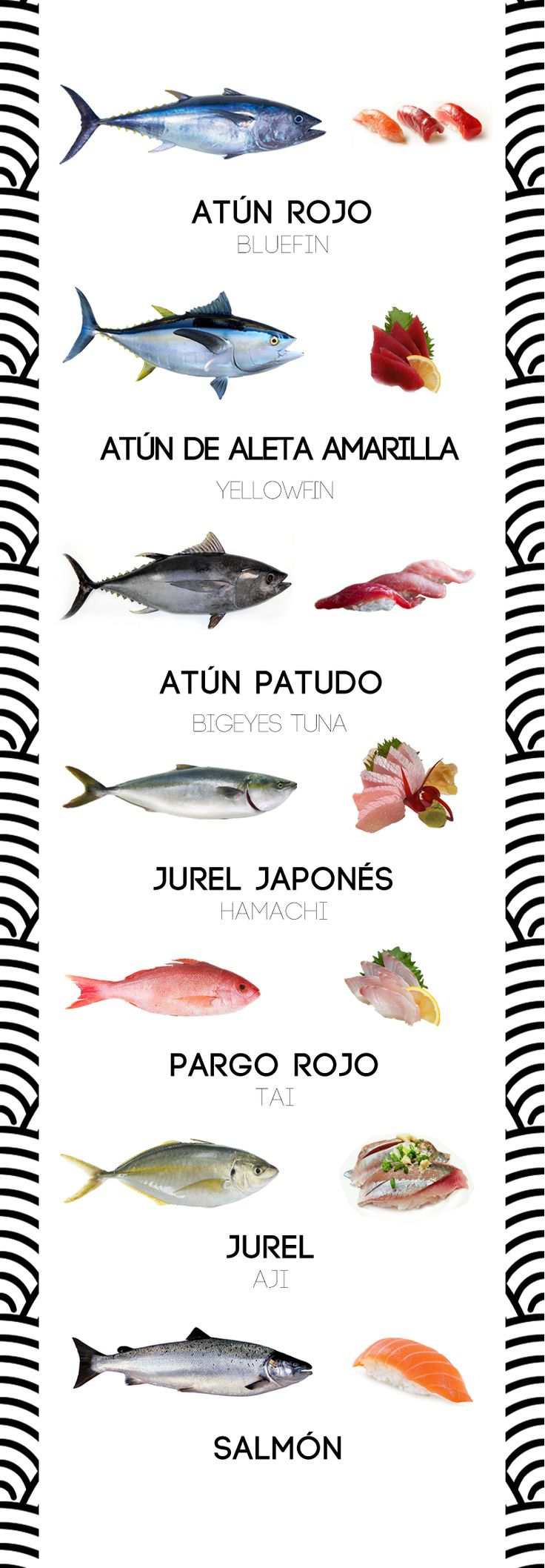 Aquí los siete pescados estrella en un bar de sushi: atún rojo, patudo, atún de aleta amarilla, pargo, jurel japonés, jurel y salmón. Estos son los siete peces más popular para sushi. El sushi requiere absolutamente el mejor pescado que se pueda conseguir. Cualquiera de los peces en esta li