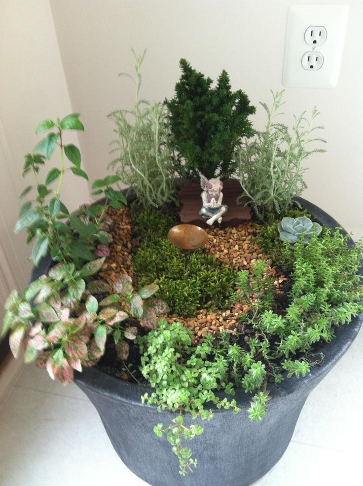 indoor fairy garden gardening ideas pinterest. Black Bedroom Furniture Sets. Home Design Ideas