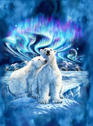 Northern Lights Polar Bear Blanket This Is On My