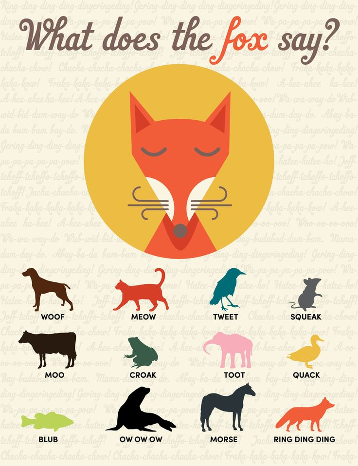 What Does the Fox Say Print/Poster. Click to order for yourself or give as a fun gift!