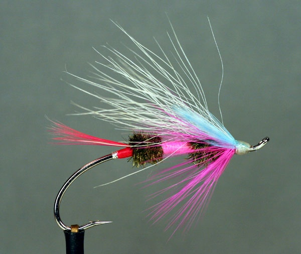 anchovy hook up salmon Salmon & steelhead: trolling rigs & flies  mr derk's tackle salmon trolling  fly  most flies are already attached to a hook and leader and can be directly.