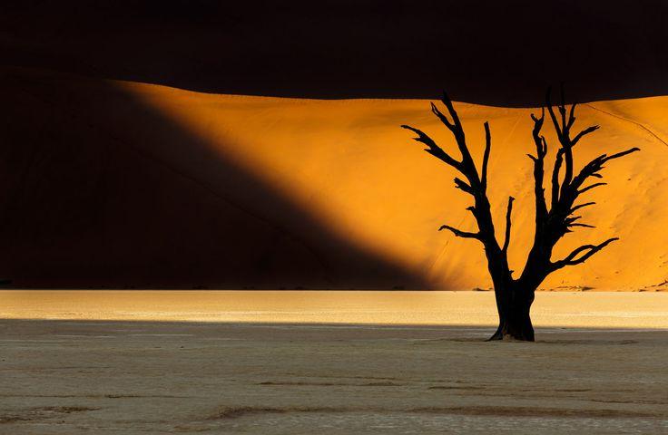 Light spot in Deadvlei by Michael Dessagne on 500px