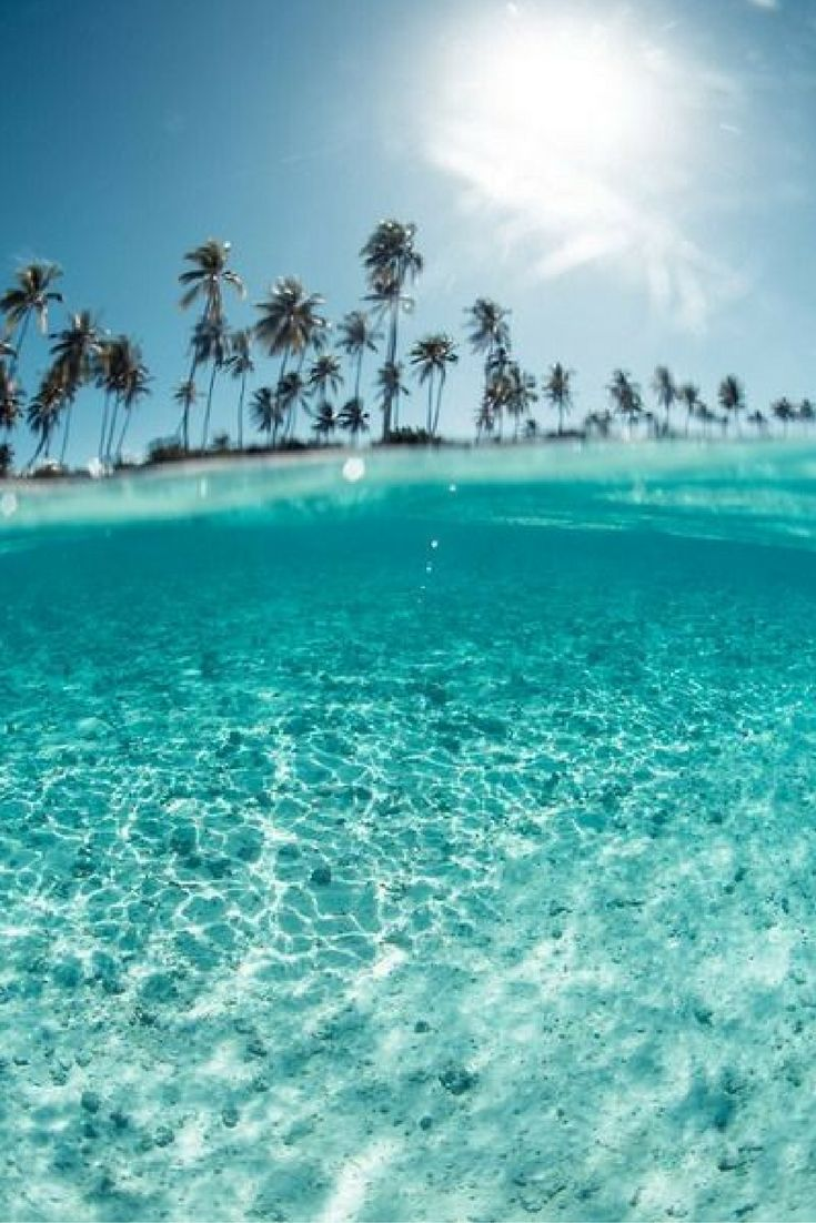 Azuurblauw zeewater, witte zandstranden, tropische temperaturen en palmbomen ☀🌴 Je vindt dit allemaal op Zanzibar. De droombestemming voor iedereen ✨ https://ticketspy.nl/deals/dream-deal-9-dagen-35-genieten-op-zanzibar-va-e447/