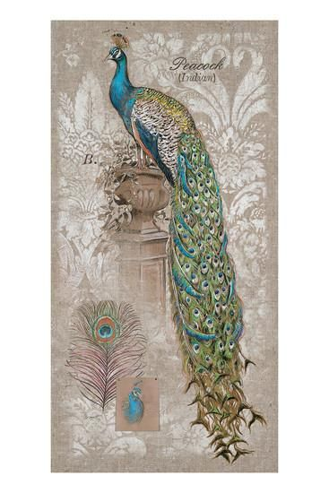 Peacock on Linen 2 Art Print by Chad Barrett at Art.com