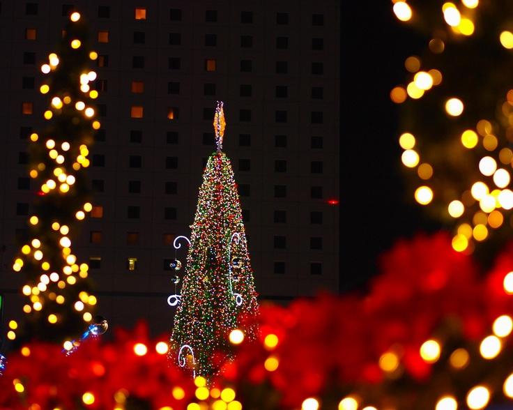 Merry Christmas at Okayama Station #Japan