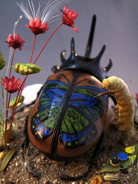 Beetle Getting Inked, insect diorama by Lisa Wood