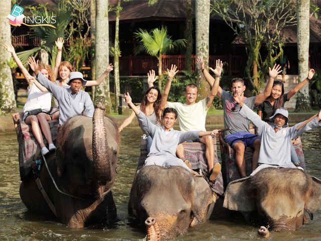 59% OFF! The experience of sitting high top an elephant through the cool jungle of Taro is an experience you'll never forget.