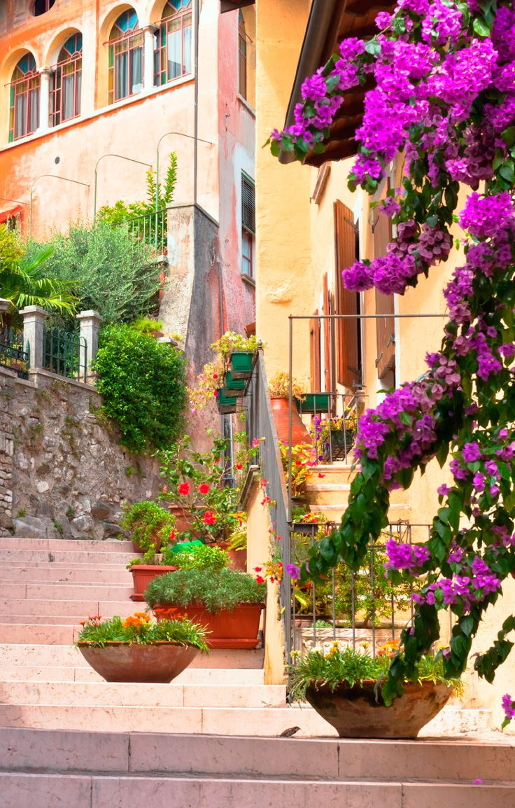 Tenemos un mundo lleno de color y lo compartimos contigo for Jardines con gravilla de colores
