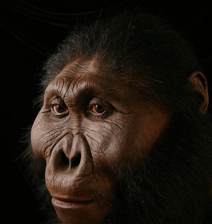 Sculpting Human Evolution - Elisabeth Daynès - Imgur