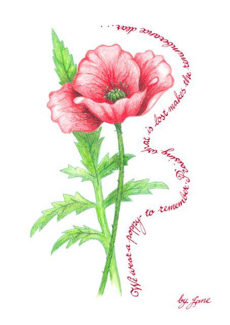 Remembrance Poppy - kaligrafické blahopřání