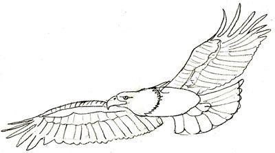Crafts Eagles