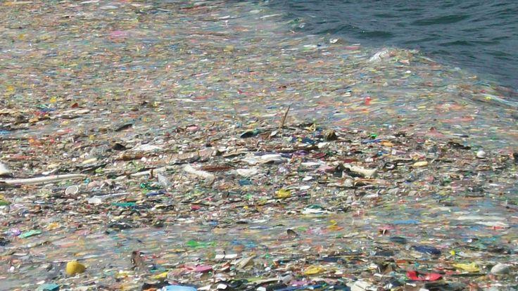 CIUDAD DE MÉXICO (apro).- Una isla de plástico con más de 100 millones de toneladas de desechos flotando a la deriva y contaminando la cuna de la existencia se encuentra en un punto del giro oceánico del Pacífico Norte, donde convergen las corrientes marinas y donde el agua entra en calma. Su tamaño actual esLeer más
