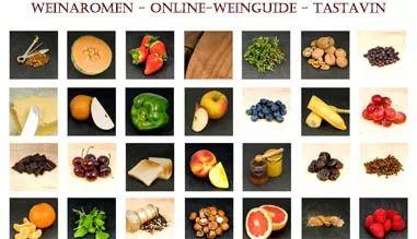 Weinaromen - Weinguide - Wein kaufen online bei Tastavin