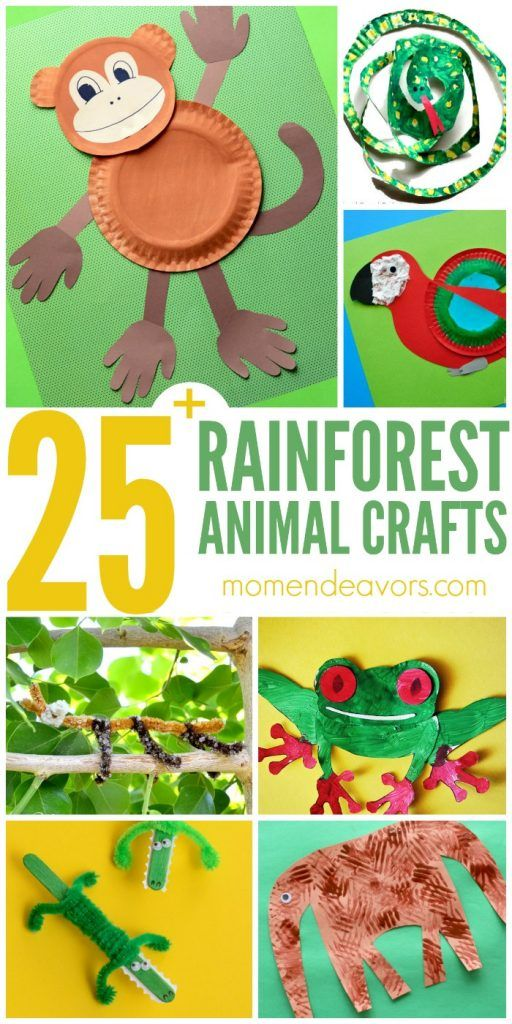 25+ Rainforest Animal Crafts for Kids