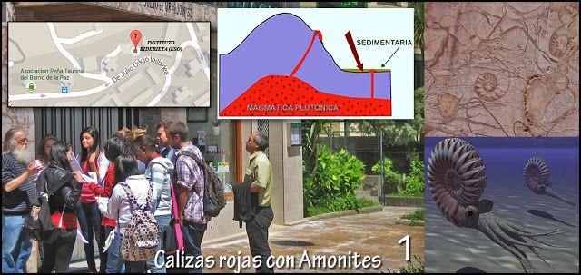 Urban Geology. Instituto Bidebieta. Donostia. Portal de c/ Julio Urquijo 32 (Bidebieta) Tipo de roca: Sedimentaria. Caliza.
