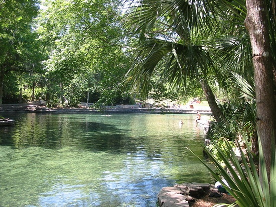 46 Best Wekiwa Springs Images On Pinterest National