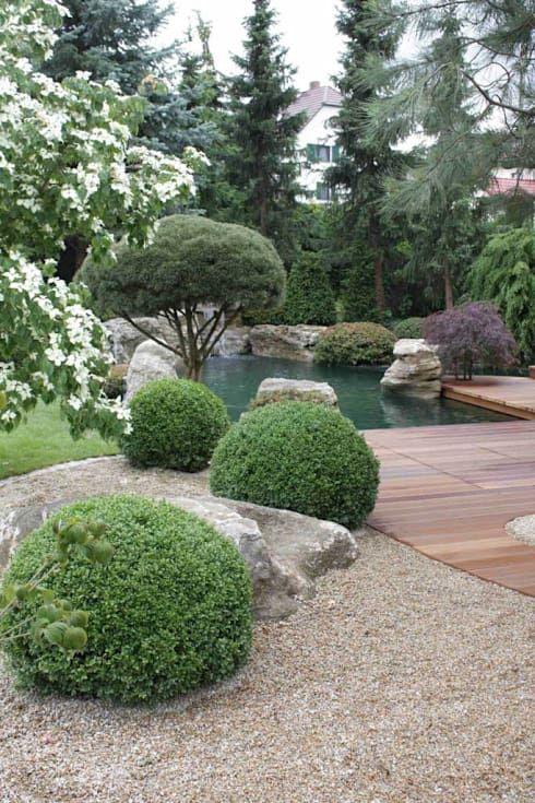 Kompletter Garten in Meissen: moderner Garten von Kirchner Garten + Teich GmbH