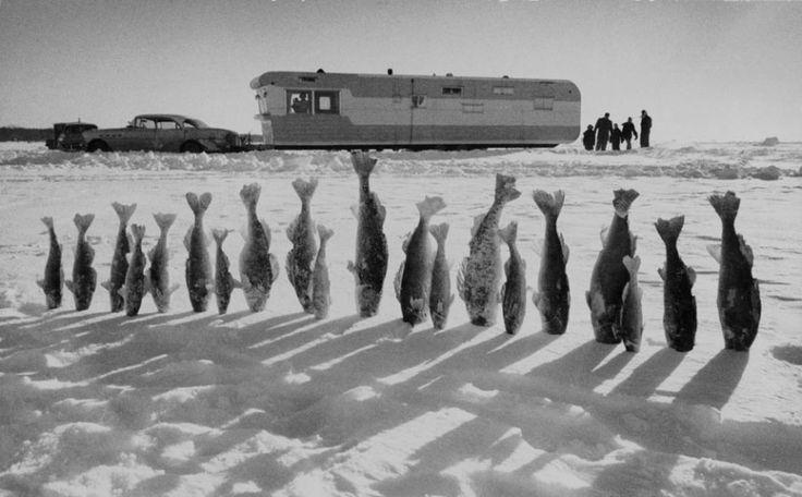 Παγωμένα ψάρια στη Μινεσότα, 1959