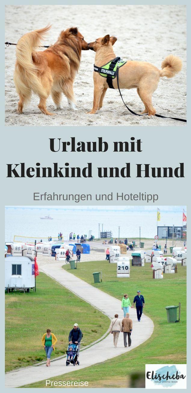 Urlaub Mit Hund Erfahrung Und Hoteltipp Urlaub Mit Hund Urlaub Mit Hund Nordsee Hunde Und Kinder