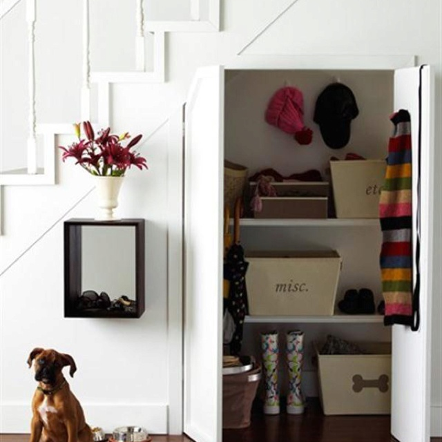Understairs storage- this idea but shelved out like a larder/pantry