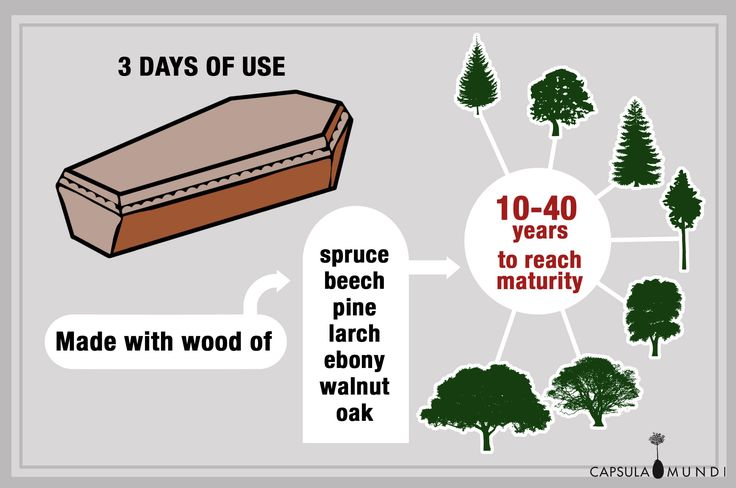 The coffin has a short life cycle and a strong environmental impact. A tree takes between 10 and 40 years to reach maturity and the coffin is of use for just three days! We want to plant trees instead of cutting them down!