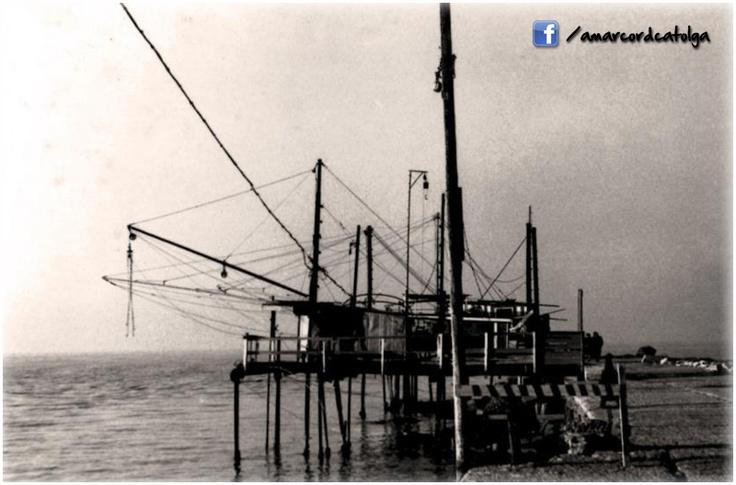 Al porto negli anni '50