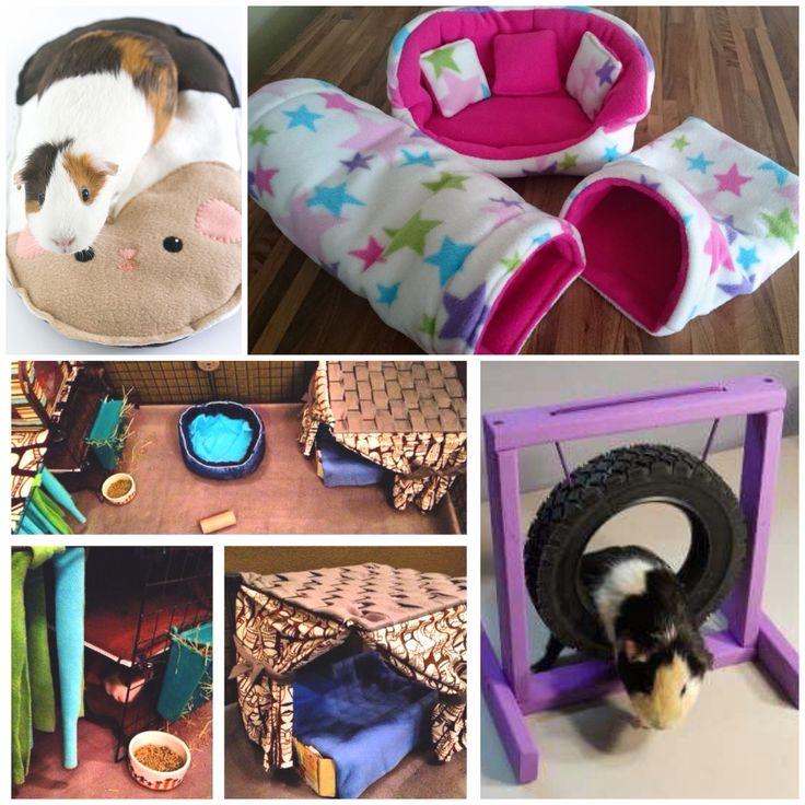 die besten 25 meerschweinchen spielzeug ideen auf pinterest hamster spielzeug kaninchen. Black Bedroom Furniture Sets. Home Design Ideas