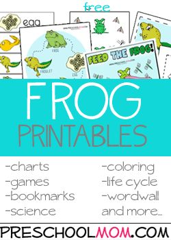 Frog Preschool Printables---Real Photo resources too! FREE at PreschoolMom.com