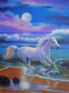 Jigsaw Puzzle 1000 Ravensburger Star Line Leuchtpuzzle - Moonlight Stallion | by www.nbfotos.de