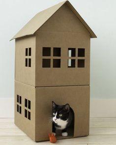 Como hacer una casa de juegos para gatos