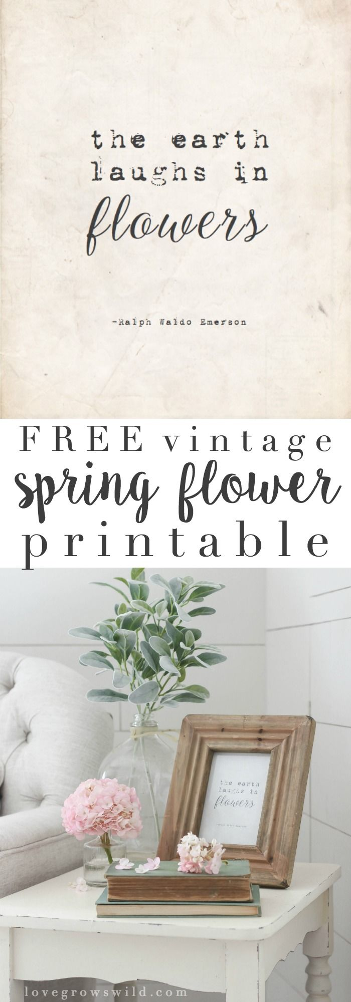 This FREE vintage printable is an easy way to add a touch of spring to your home decor! Click to get your printable at LoveGrowsWild.com