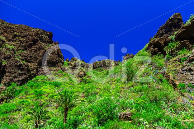 Qdiz Stock Photos Mountains on Tenerife Island in Spain,  #blue #Canary #day #green #island #landmark #landscape #mountain #nature #park #rock #sky #Spain #spring #summer #Tenerife #Travel #tree #view