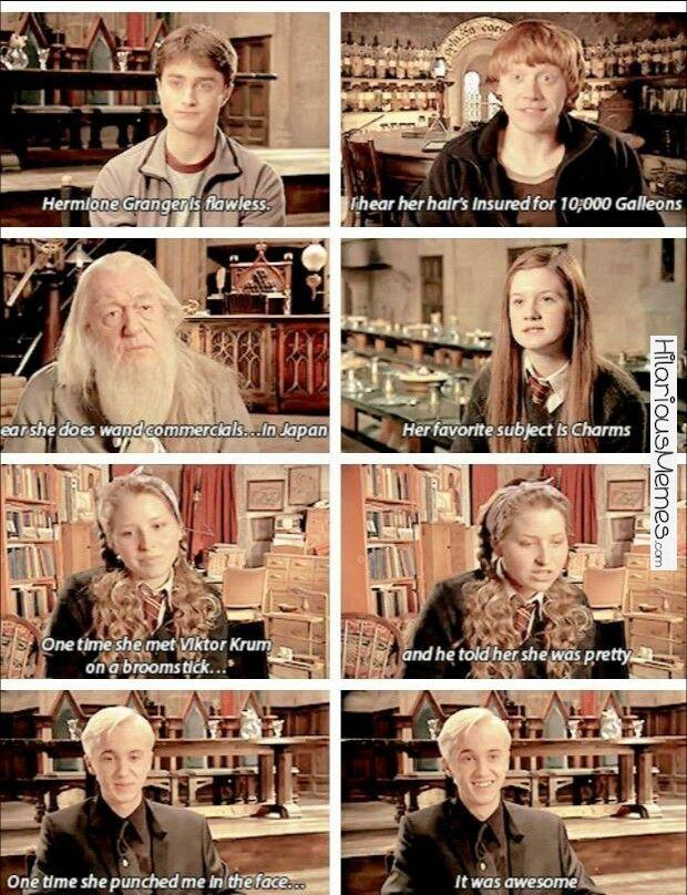 Funny Memes How do I begin to explain Hermione Granger?...