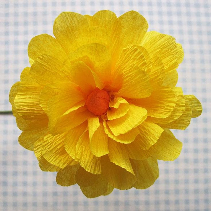 1000 ideas about construction paper flowers on pinterest for Crepe paper wall flowers